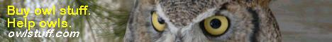 owlstuff.com banner with 'Alice' from the Houston Nature Center in MN