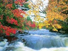 Autumn on a small river